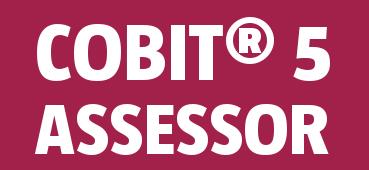 COBIT 5.0 Assessor