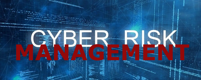 Cyber Risk Management